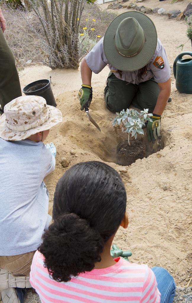 The Restoration Ecology Ranger Providing Planting Instructions