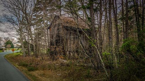 road trees abandoned barn virginia rustic gretna logcabin fujifilm xm1 logbarn bobbell pittsylvania deerview