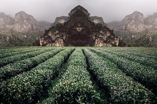 Unknown Fields | by Keysgoclick