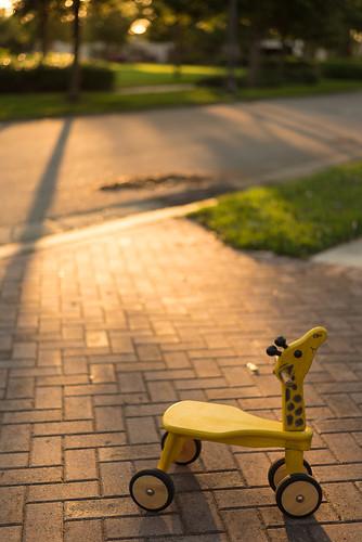 sunset children toy 50mm nikon child d750 nikkor goldenhour