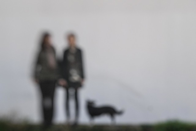 F4310 ~ Two women and a dog... (II)