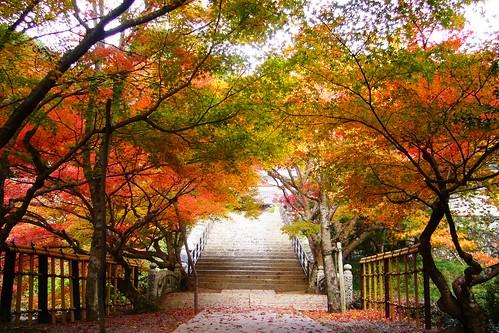 円通寺 entsuji tamba hyogo kansai japan 兵庫県 丹波市 autumnaltints 紅葉