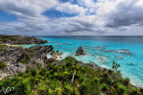 ocean sea rock landscape coast aqua atlantic shore tropical d750 bermuda reef