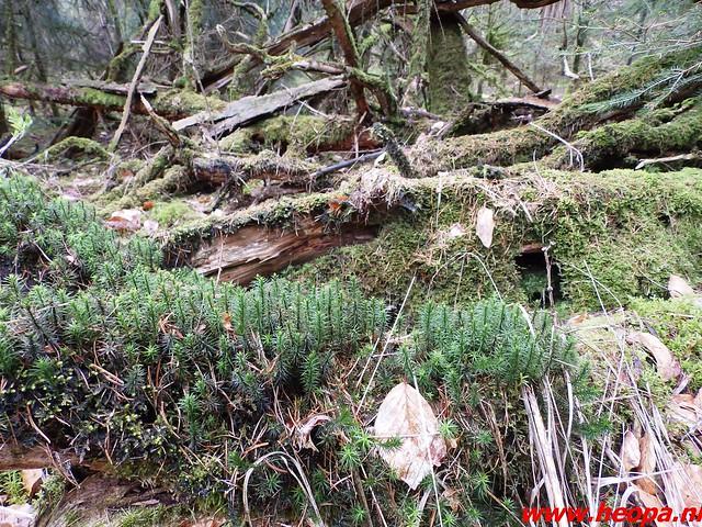 2016-04-30   Lentetocht  (klim) wandeling 40 Km  (28)