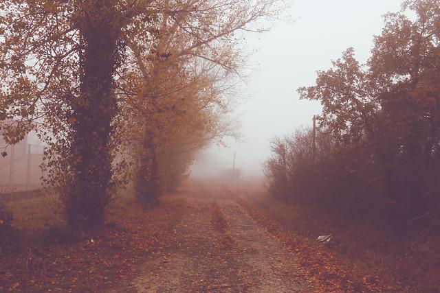 Chemin des chasseurs