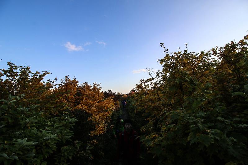 2014-09-28_00051_栗駒山.jpg