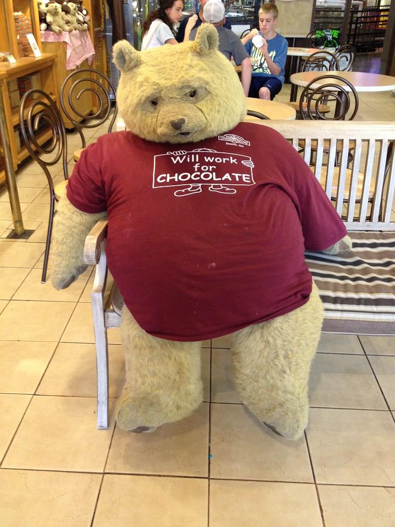 Bear loves chocolate
