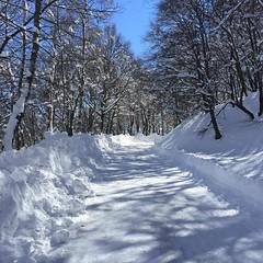 W la neve! #como #comolake
