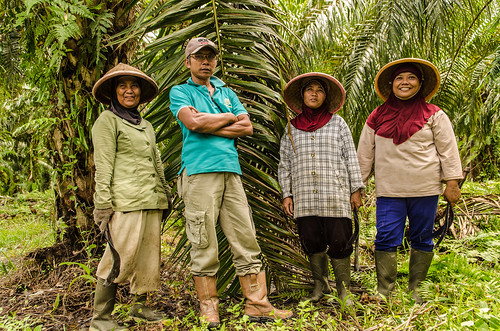 Women in Palm Oil Production | by Green Commodities Programme