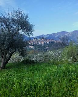 """spring is starting"" [Atena Lucana (Salerno / Italy)] (on explore 2016 4 5)"
