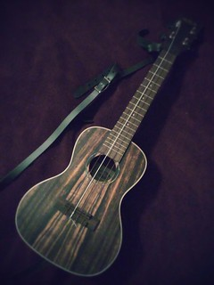 I need to play my ebony concert Kala more often. Sounds great, hate the strap. #ukulele | by insidious_plots
