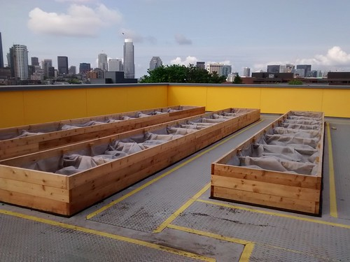 20160428 Beds ready for soil