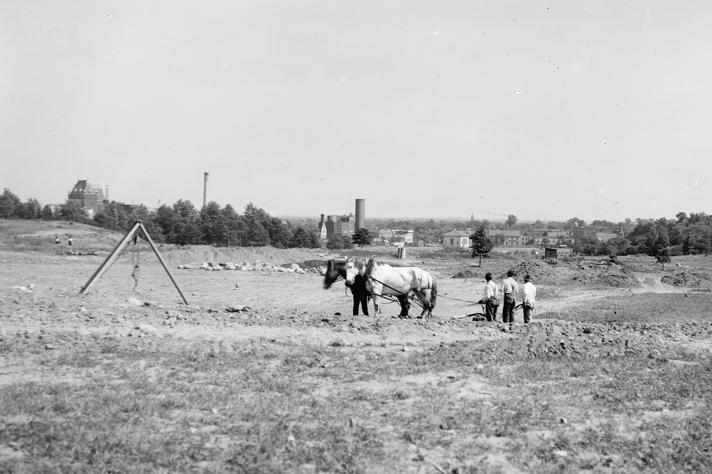 Grading the land for the southern part of the garden with horse team, 1916. Photo by Louis Buhle.