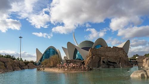 Oceanogràfic | by Angelo Aversa