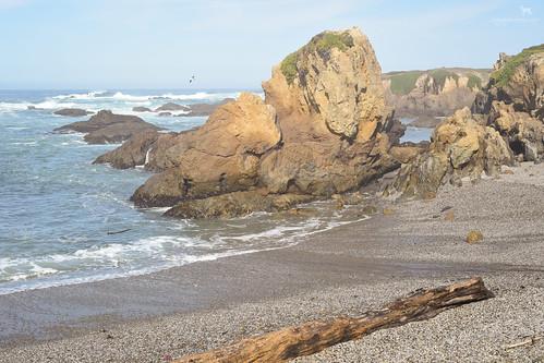 california cove pacificocean glassbeach fortbragg