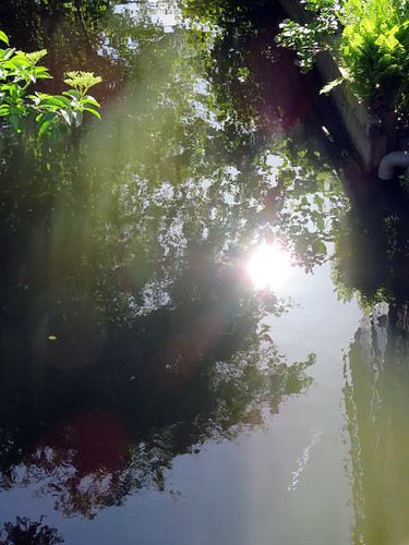 Sunlight on the canal in Edam, Holland