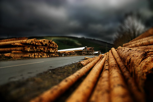 Logs | by arbeer.de