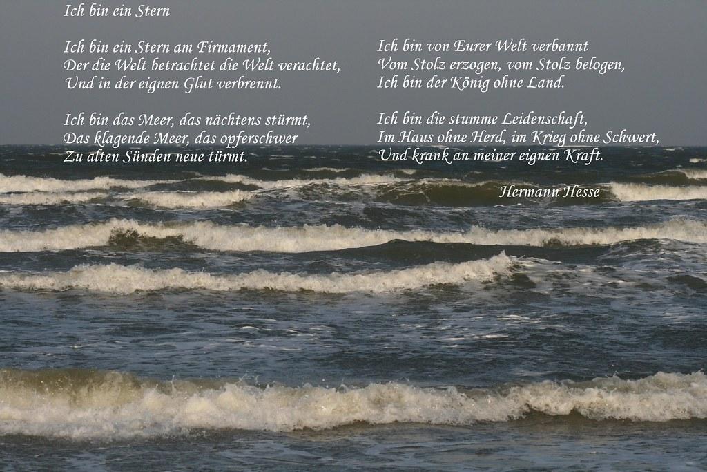 Hermann Hesse Gedicht Für Meine Elfe Aus Des Mondes Nacht