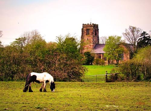 horse rural canal cheshire picturesque stlawrenceschurch stoak
