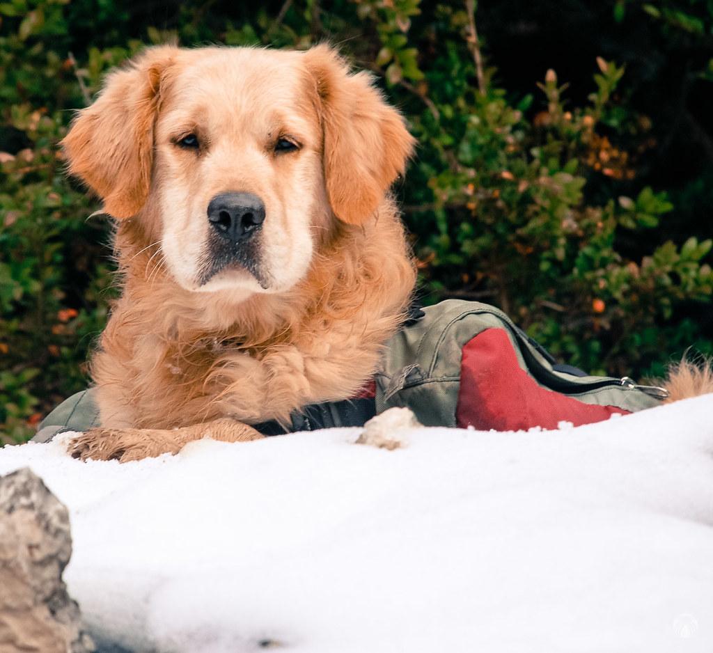 Primer contacto con la nieve