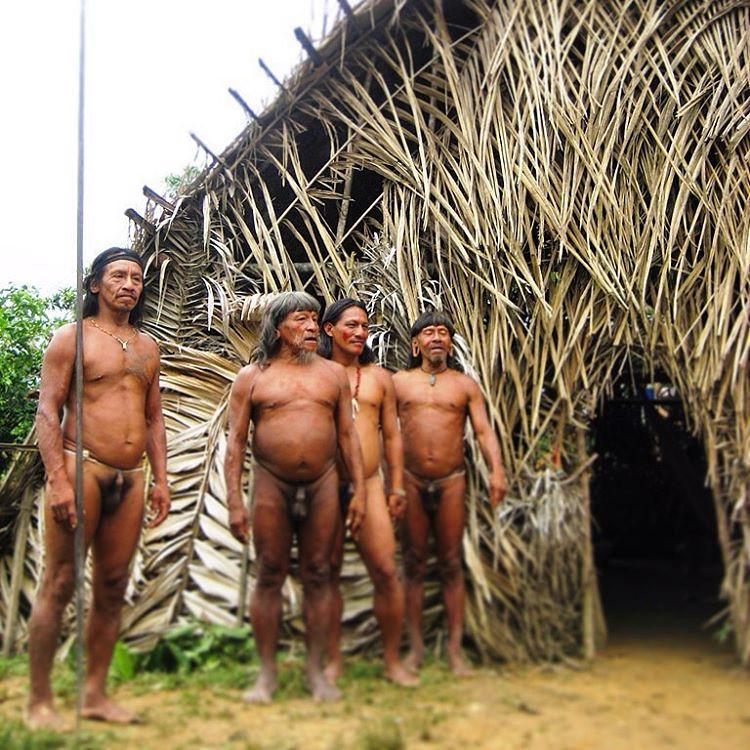 порно в племенах амазонки видео него взводе