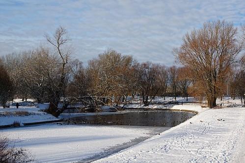 park city winter landscape canal pond poland polska warsaw warszawa wildduck capitalcity jurekp sonya77
