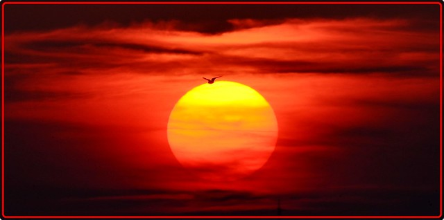 Sunset at Mamaia