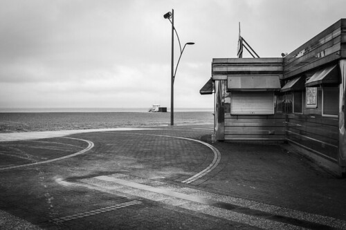 Wet Winter Walk 7 | by Julia M Cameron
