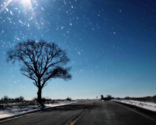 Winter road. (Illinois)