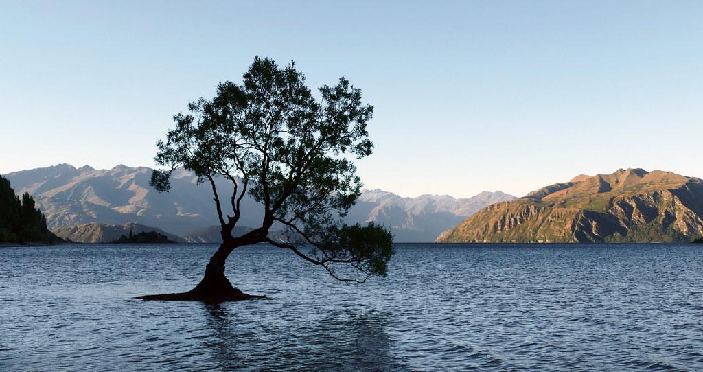 「Lake Wanaka」的圖片搜尋結果