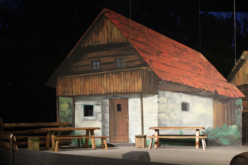 2009 Domača gledališka predstava V Ljubljano jo dajmo - foto Uroš Zagožen