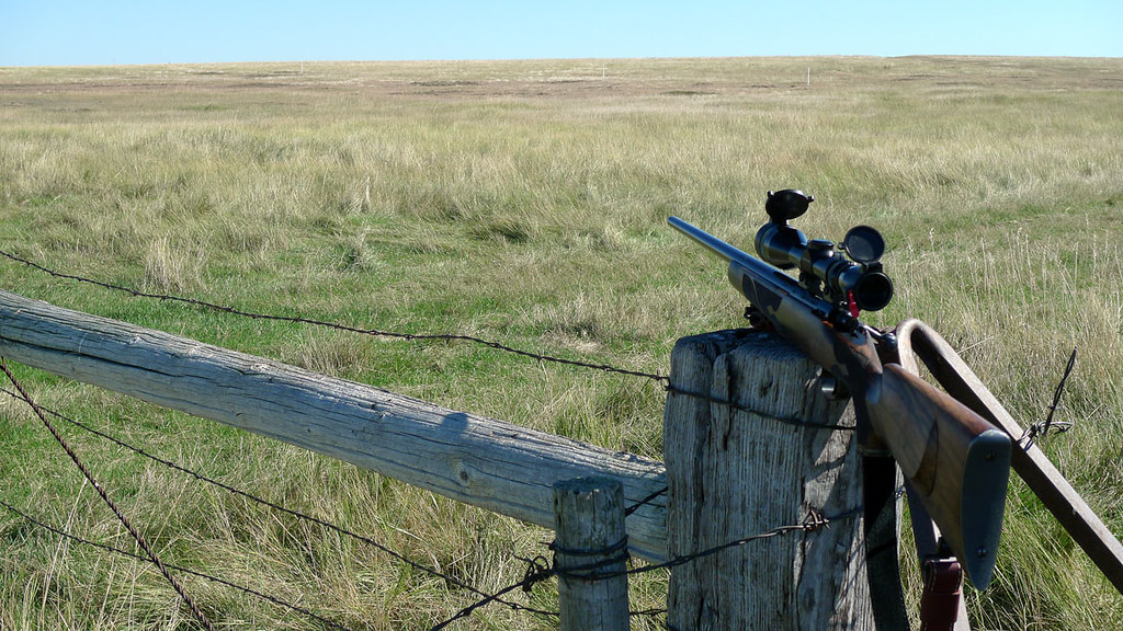 9-29-10 - Deaht in the long grass - rifle on fence post