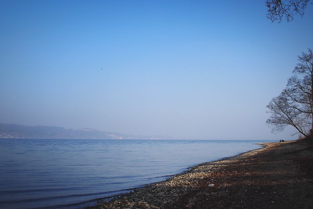 Silence Relaxing Seaside Outdoors Good Times Outdoor Nature Enjoying Life Lake Of Constance Germany EyeEm Nature Lover Landscape Lake Friends Sea Taking Photos