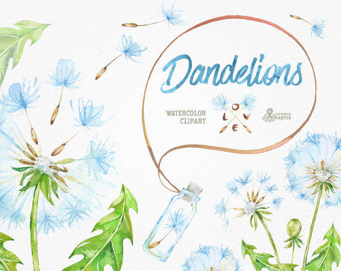 Dandelions 14 Watercolor Clipart Blowballs Floral Weddi