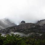 Mo, 28.12.15 - 07:20 - Cuernos im Nebel