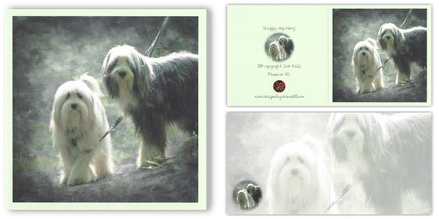 shaggy dog story . . .
