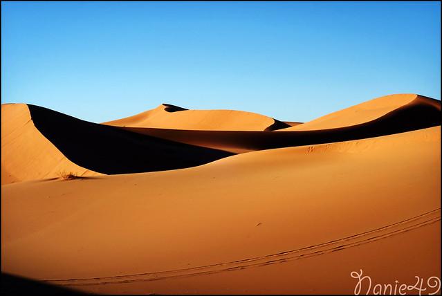 Dunes, Maroc.