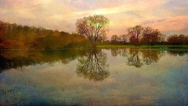 Réflections