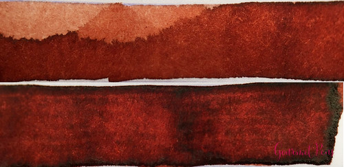 Ink Shot Review Diamine 150th Anniversary Terracotta @AppelboomLa (8) | by GourmetPens
