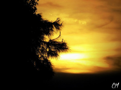 sunset love beautiful photography photo photos lov beautifulday photographylandscape
