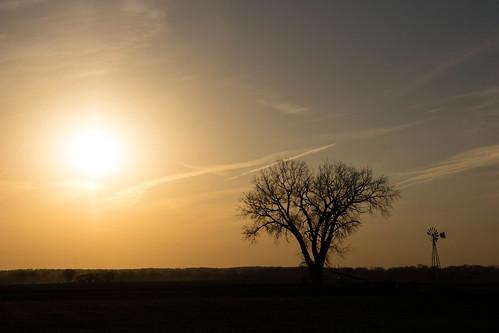sun councilbluffs landscape sunset lanternfest sky iowa 2016 tree farm windmill pacificjunction unitedstates us
