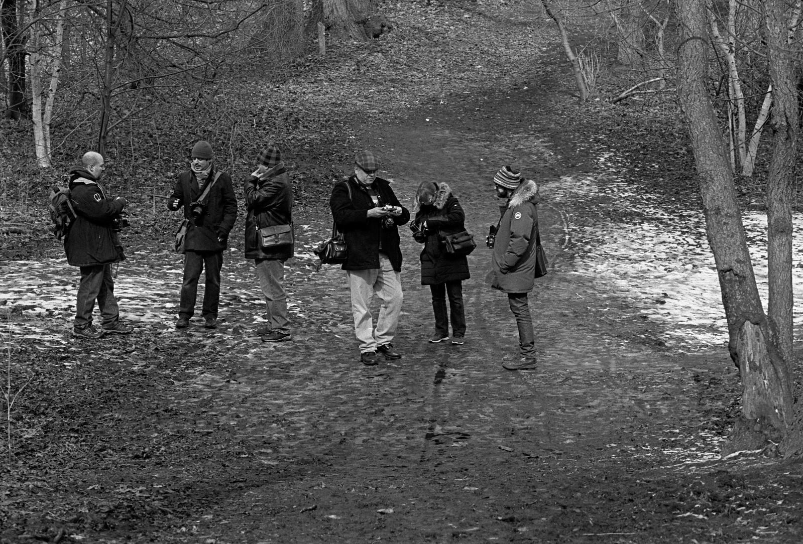 TFSM Winter '16 - Muddy York