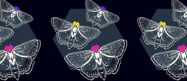Bejeweled Moths