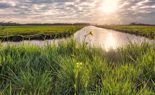 canal grassland polder hss middendelfland nederlandvandaag sliderssunday
