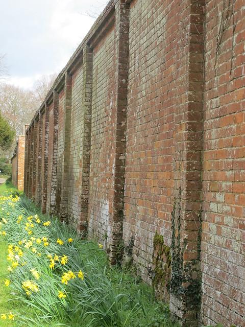 Outside Wall of Walled Rose Garden, Mottisfont Abbey Gardens SWC Walk 58 Mottisfont and Dunbridge to Romsey taken by Karen C.