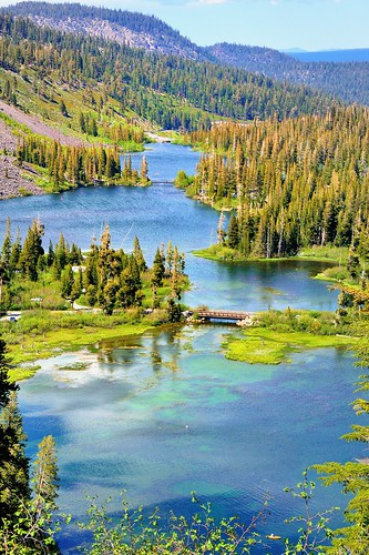 california bridge blue trees mountain lake green water grass alpine twinlakes sierranevada pinetrees inyonationalforest monocounty waterpictorial twinlakesfalls joelach