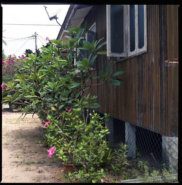 Terengganu : The House