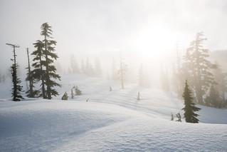 Alpine Fog | by Bryn Tassell