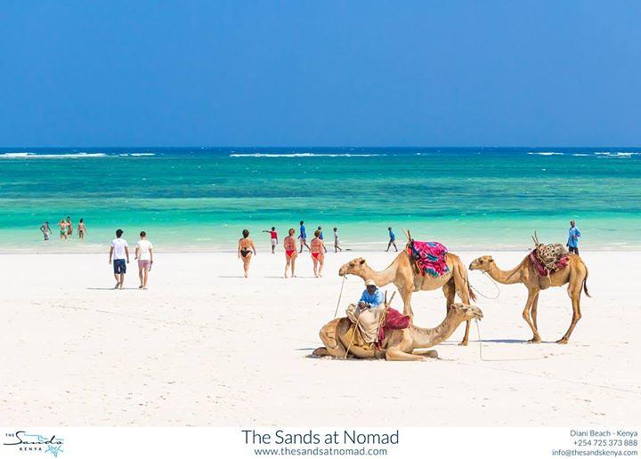 Beach moments | Diani Beach - Kenya - Africa ift.tt/1vOkrNH | The Sands  Kenya | Flickr