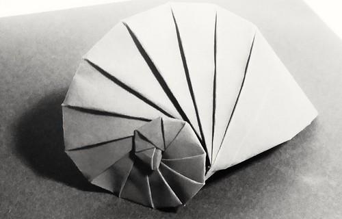 Nautilus de Tomoko Fuse Papier tant 35*35. | by louis-nicolas